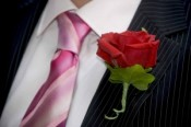 Buttonhole - Rose