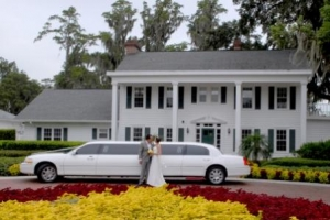 Standard Limo 3 hour Hire - Accommodation I Drive or Lake Buena Vista only